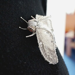 Silver fly