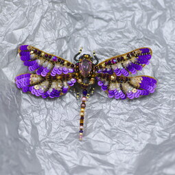 Autumn violet dragonfly